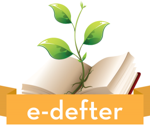 e-defter_1